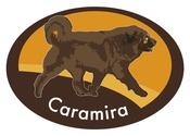CARAMIRA OÜ