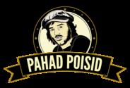 PAHAD POISID OÜ