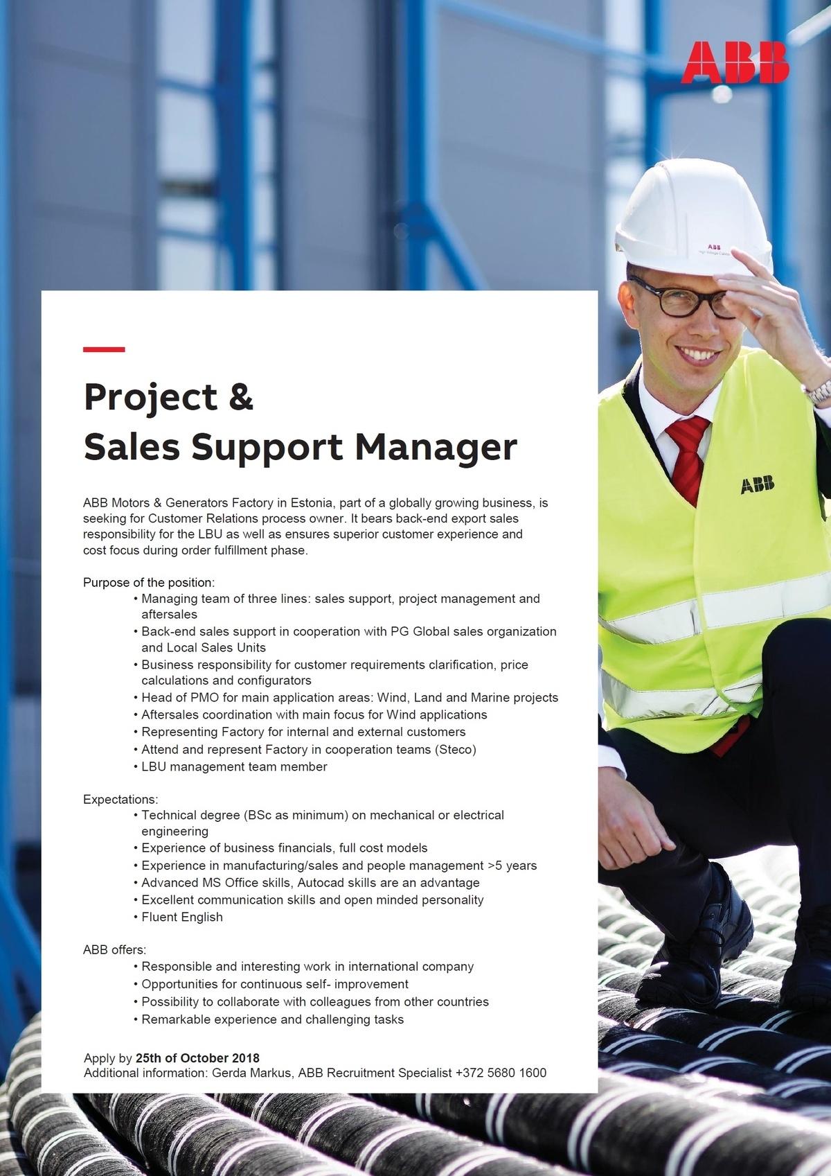 sales support manager job description