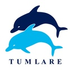 Tumlare Corporation AS tööpakkumised
